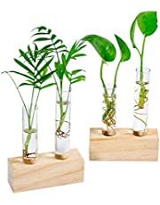 Ivolador Crystal Glass Double Test Tube Vase in Triangle Wooden Stand for Hydroponic Plants Home Garden Decoration