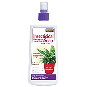 Bonide 112 Ready-to-Use Insect Soap, 12-Ounce