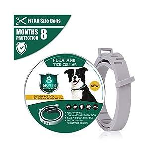 DOUYAO Collar Antiparasitos para Perros y Gatos,Collar Antiparasitos Perros/Gatos contra Pulgas,contra Pulgas Garrapatas y Mosquitos, Tamaño Ajustable e Impermeable,8 Meses de Protection
