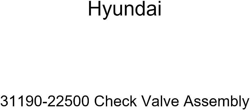 Genuine Hyundai 31190-22500 Check Valve Assembly