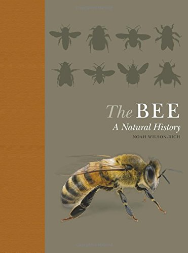 The Bee: A Natural History