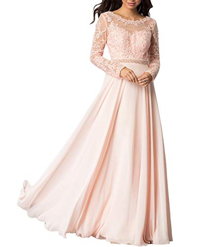 Roiii Women Embroidered Chiffon Prom Wedding Party Cleb Cocktail Formal Gowns Long Dress Size S-3XL (Large, Pink)