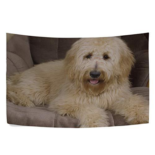 (RH Studio Tapestry Wall Hanging Dog Chair Thoroughbred Lie Dorm Livingroom Bedroom Bedspread Sofa Cove Living Kids Girls Boys Room Dorm Deco (60x40inch))