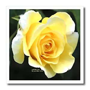 ht_5029_1 Lee Hiller Designs Roses - Pale Yellow Rose - Iron on Heat Transfers - 8x8 Iron on Heat Transfer for White Material