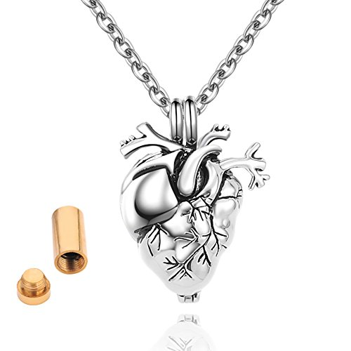 SalaTrend Anatomical Heart Locket Cremation Ash Peandant Necklace in Silver Tone 20 Inch Chain