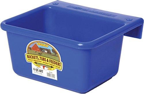 Little Giant Farm & Ag MF6BLUE 6 Quart Blue Mini Feeder