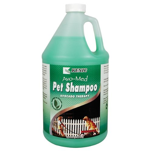 Kenic Avo-Med Avocado Moisturizing Shampoo – Gallon, My Pet Supplies