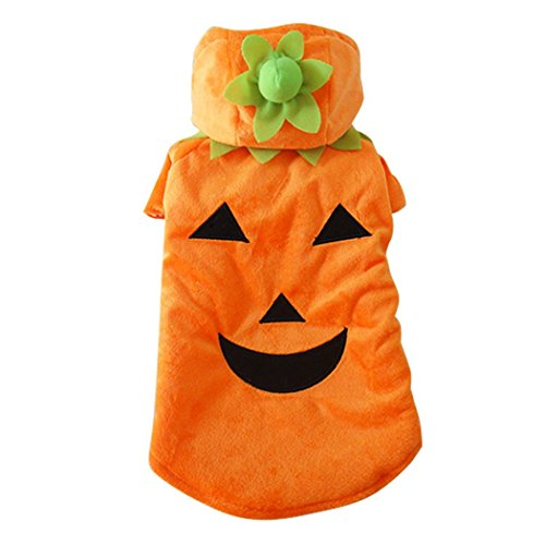 [Prettysell Pumpkin Dog Pooch Halloween Costume Clothes XS-XL Pet Suit Autumn Winter] (Mini Dachshund Halloween Costumes)