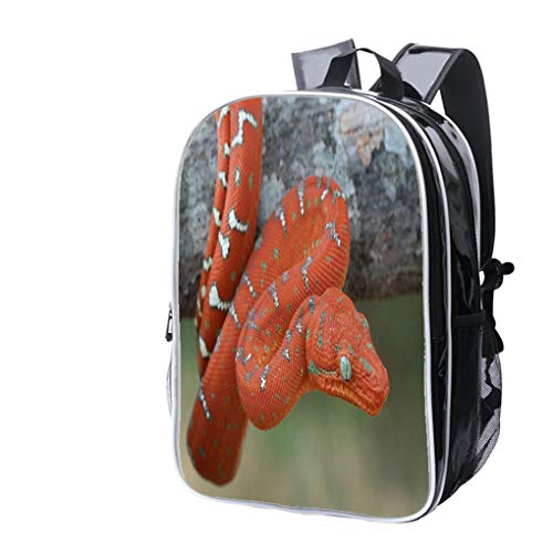 High-end Custom Laptop Backpack-Leisure Travel Backpack Baby Emerald Tree Boa Hanging on Tree Branch in Rainforest Water Resistant-Anti Theft - Durable -Ultralight- Classic-School-Black -