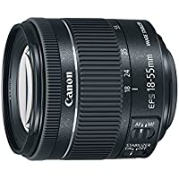 Canon EF-S 18-55 f/4-5.6 IS STM (Certified Refurbished)