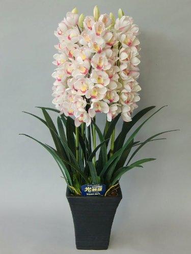 アートフラワー造花シンピジューム直立5本立光触媒品 B008GLNG1K