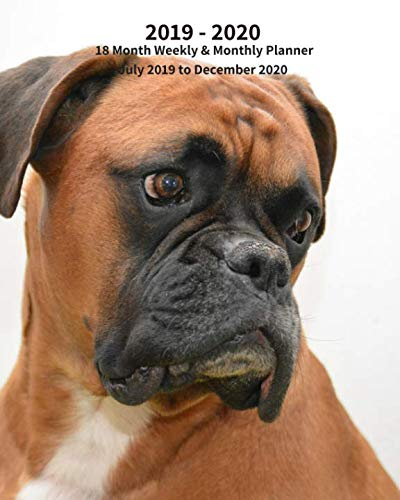 (2019 - 2020 | 18 Month Weekly & Monthly Planner July 2019 to December 2020: Boxer Dog Pup  Monthly Calendar with U.S./UK/ ... Calendar in Review/Notes 8 x 10 in. Vol 19)