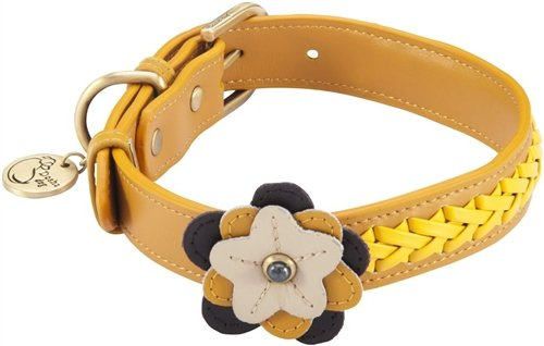 "10.5""-12"" Petal Sunflower Dog Collar 3/4"" wide, Small"