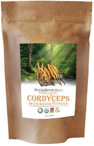 Organic Cordyceps Mushroom Powder 100g
