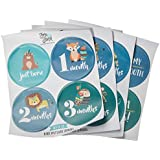 Baby Monthly Milestone Stickers (Set of 20) - Birth...