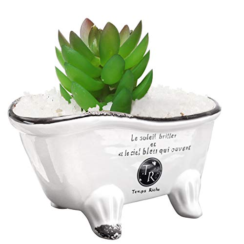 9-Inch, White Ceramic French Country Style Bathtub Succulent Planter, Soap ()