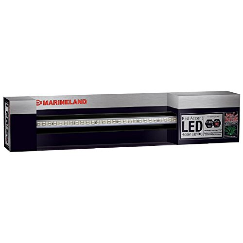 Marineland Accent Hidden LED System