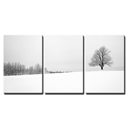 """Wall26 - 3 Piece Canvas Wall Art - Winter with Snow and a Lonely Tree in a Field - Modern Home Decor Stretched and Framed Ready to Hang - 16\""""x24\""""x3 Panels"""