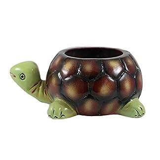 Lasaki Tortoise Big Ceramic Pots for Indoor Plants,Planters,Flower pots,gamla for Indoor,Outdoor,Balcony,Home,Garden,Office Decor,Succulent Pot (Hand Painted Green Neck)(L:19.5 cm, W:13.5 cm, H:7 cm) 4131SGFHIGL