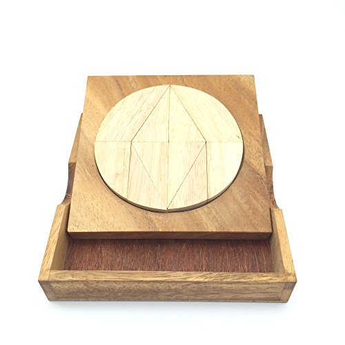 BRAIN GAMES Circle Tangram Wooden Puzzle