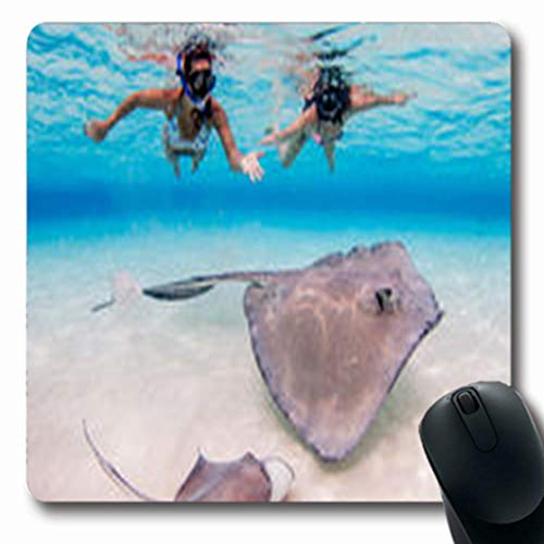 Pandarllin Mousepads Cayman Stingray City Sandbar Marine Grand Wildlife Nature Oblong Shape 7.9 x 9.5 Inches Oblong Gaming Mouse Pad Non-Slip Rubber Mat (Stingray Mouse Pad)