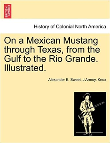 Book On a Mexican Mustang through Texas, from the Gulf to the Rio Grande. Illustrated.