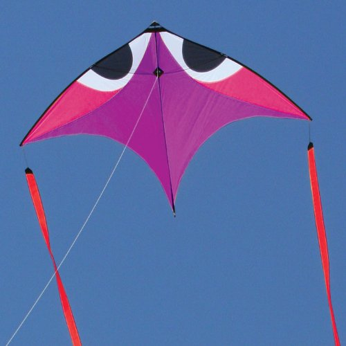 Flying Wings Purple Wala Glider-Kite ()