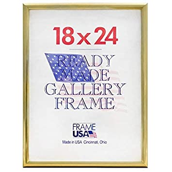 Amazoncom Frame Usa Deluxe Poster Frame Frames 18 X 24 Gold