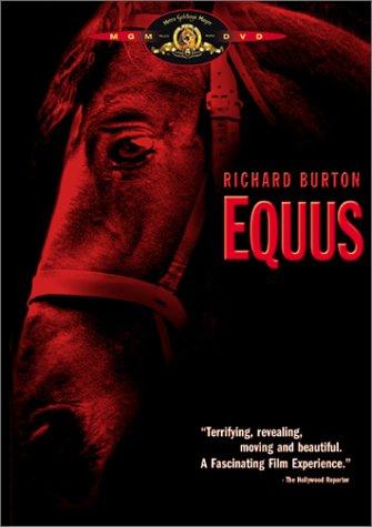 Risultati immagini per Equus lumet
