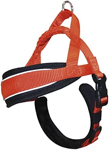 XS Naranja 38-48 cm Croci C5081869 Hiking Arn/és Sueco Endurance