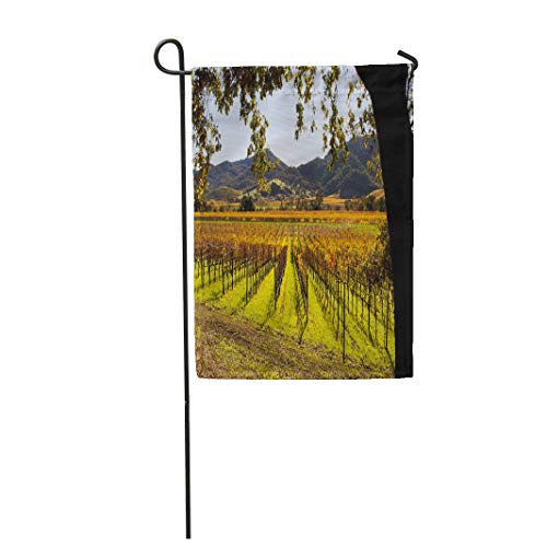 Tarolo Decoration Flag Colorful Vineyard Napa Valley in Autumn Green California Sonoma Fall Grapes Thick Fabric Double Sided Home Garden Flag 12