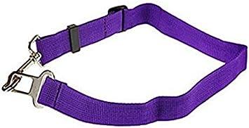 Monocapa Rodman 1 PCS Cintur/ón de Seguridad para Perros Ajustable para Asientos de Autom/óviles Correa de Cintur/ón de Seguridad para Perros y Gatos Muy Resistente a la Abrasi/ón
