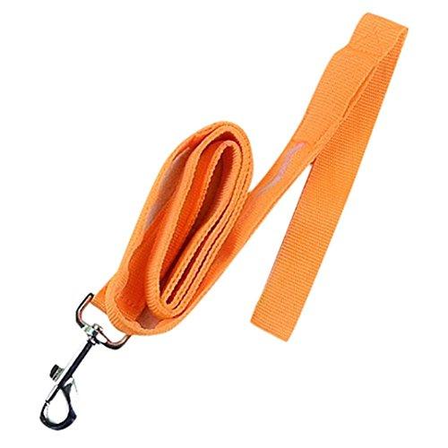 Price comparison product image FORESTIME Pet Walking Leash Rope Belt LED Flashing Dog Harness Safety Light Nylon Lead (orange, one)