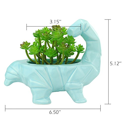 VanEnjoy 6 Inch Cute Cartoon Dinosaur Shape Ceramic Succulent Planter, Water Culture Hydroponics Bonsai Cactus Flower Pot,Air Plant Vase Holder Desktop Decorative Organizer (Supersaurus, Blue)
