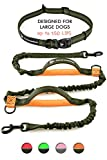 Pet Dreamland - Hands-Free Dog Leash for Running - Improved Training Leash