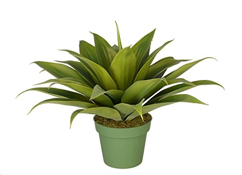 House of Silk Flowers Artificial Agave Succulent (Large)