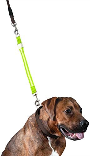 Furhaven Visibility Light Up Walking Extender product image