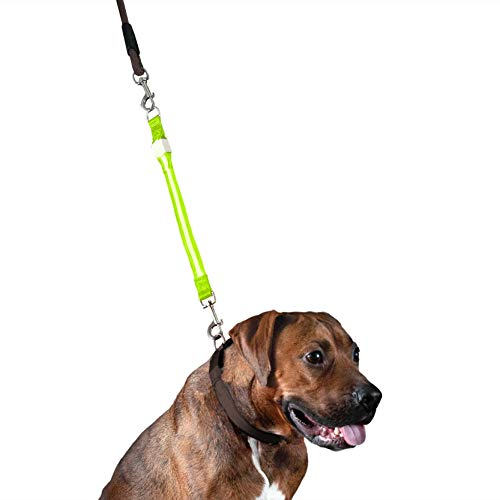 Most Popular Cat Leashes