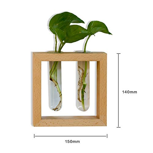 SeedWorld Vases - Japanese Style Solid Wood Black Walnut Wall Vase Glass Test Tube Hydroponic Plants Flowers Pot Creative Home Decor Wall Ornament 1 PCs