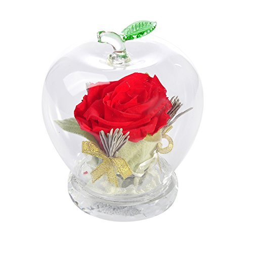 Handmade Preserved Flower Rose, Never Withered Roses, Upscale Immortal Flowers, Eernal Life Flowers for Love Ones, Gift for Valentine's Day, Christmas…