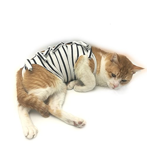 Professional Recovery Suit for ABDOMINAL Wounds and Skin Diseases,E-Collar Alternative for Cats and Female Dogs, Size Small, After Surgey Wear, Recommended by Vets
