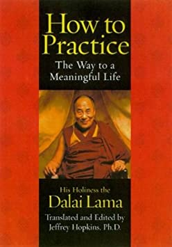How to Practice: The Way to a Meaningful Life / Paperback