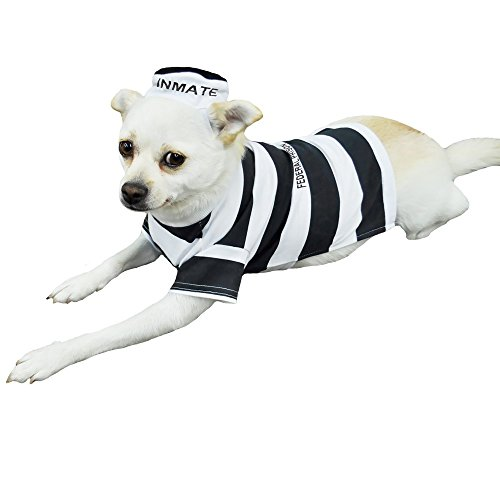 Otis and Claude Fetching Fashion Prison Pooch Costume LARGE