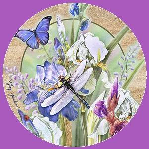- Dragonfly & Iris I Thirstystone Coasters