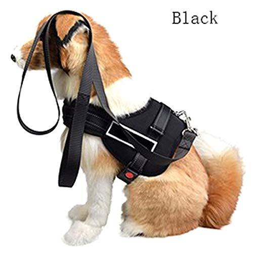 wvu dog harness - 5