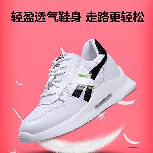 GTVERNH Damenschuhe Mode Casual Casual Casual Schuhen Im Frühjahr und Herbst Spitzen Flachen Boden Mesh - Schuhe Atmungsaktive Student Sportschuhe. c6447f