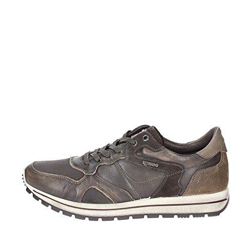IGI & Co 47662/00hombre Low Zapatillas marrón