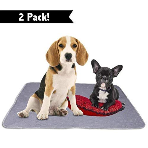 - Washable Reusable Pee Pads for Dogs | XXL (35