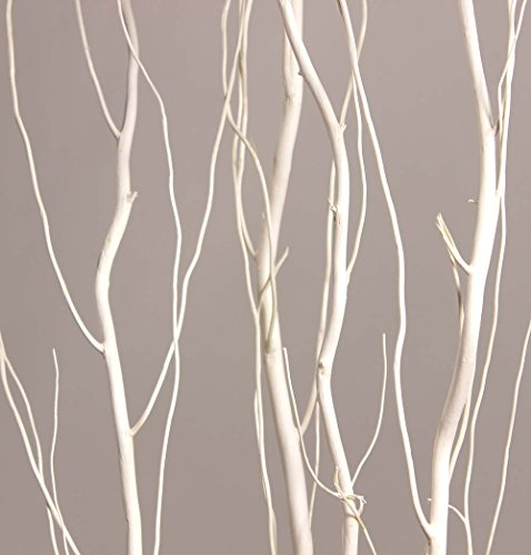 Green Floral Crafts White 4-5 Ft Tall Curly Willow- Pack of 10 stems - Artificial Curly Willow