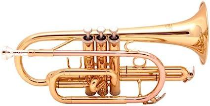 Academy CT-3G - Corneta (en si bemol, lacado en oro): Amazon.es ...
